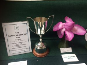 Magnolia 'Bishop Peter' wins the Brother Vincent Cup
