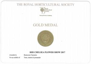 Chelsea Gold Medal 2017