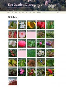 Diary October