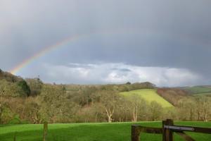 rainbow over Derrecks Wood