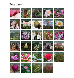 February Entries