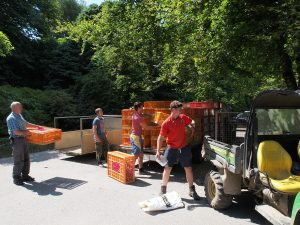keepers are unloading crates of pheasant poults