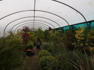 Show Tunnel May 2017