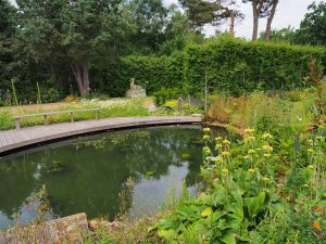 site of the new Harrod herbaceous garden