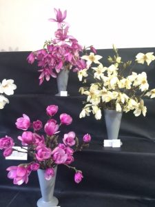 Cornwall Garden Society flower show at Boconnoc