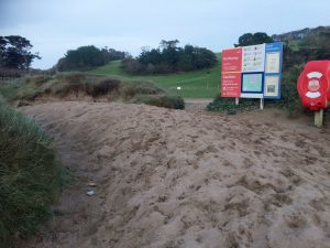 sand on the beach at Porthluney