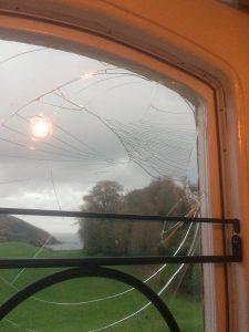 A pheasant has hit the best bathroom window!
