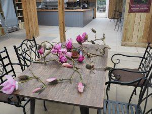 Our 'relief' Caerhays magnolia flowers
