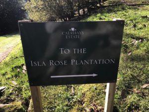 Isla Rose Plantation sign