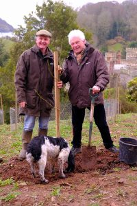 Roy Lancaster and Jaimie Parsons ceremonially plant Magnolia 'Caerhays Splendour'