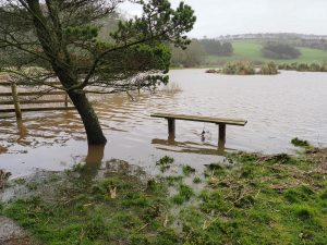 water meadows are flooded