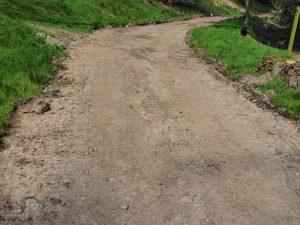 bottom track