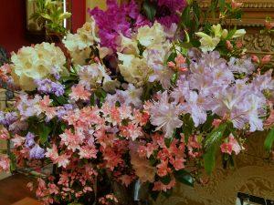 vases of flowers