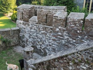 Repairs to the walls