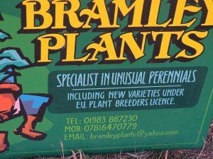 Bramley Plants