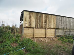 New cladding on the end of the old black shed