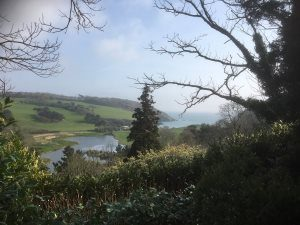 view of Porthluney Cove