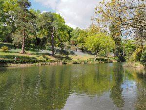 General garden views