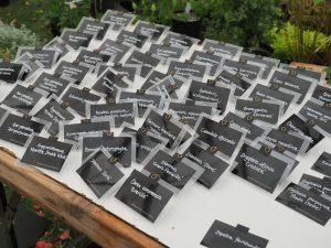 500 labels