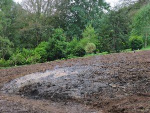 new clearing beyond Higher Quarry Nursery