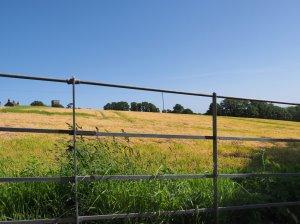 Schoolhouse Meadow