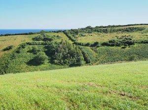 Corwenna hill