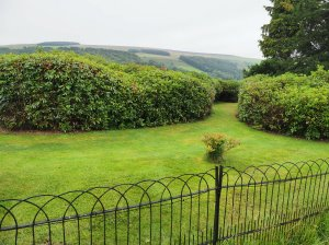 garden near Wolsingham