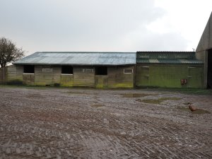old stables