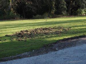 Tregullow lawn