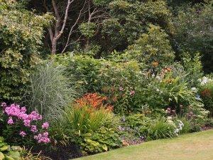 views across the garden